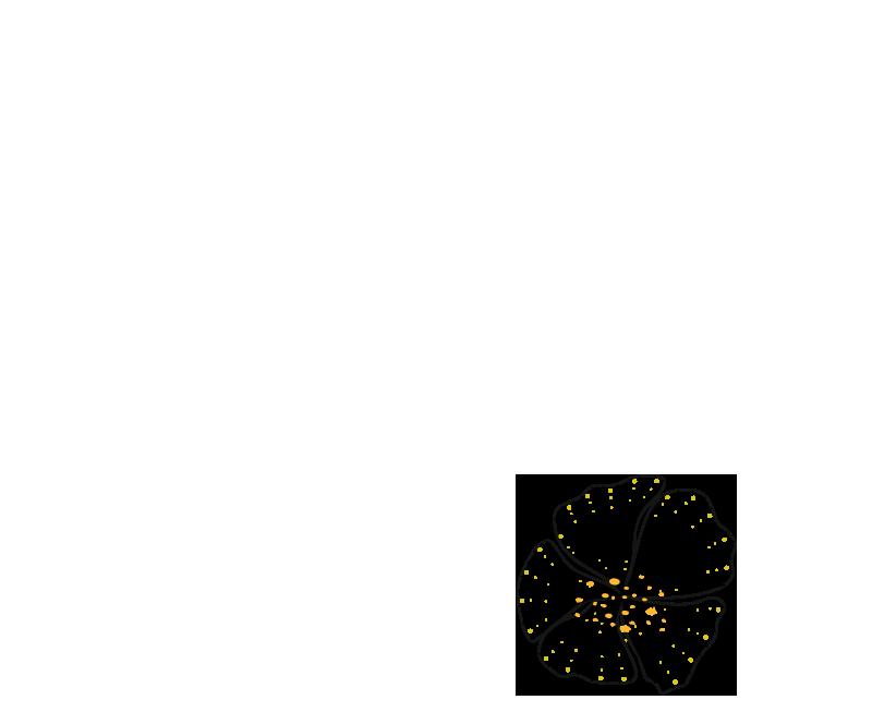 fleur trait 8
